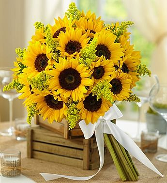 Country Wedding All Sunflower Bouquet- medium sunflowers accented with solidago and bound with a white double satin ribbon $70.00- $110.00
