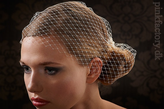 Lovely and versetaile birdcage veil