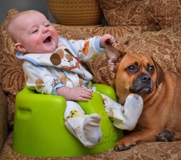 Best Kids And Dogs Images On Pinterest Best Friends - Cute portraits baby and rescue dog