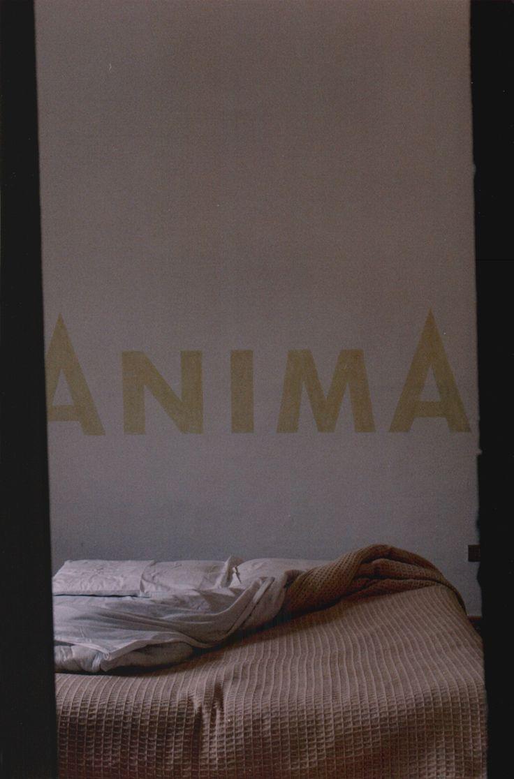 17 migliori idee su stanza da letto su pinterest for Grande disposizione della stanza