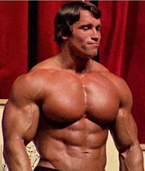 arnold education of a bodybuilder pdf download