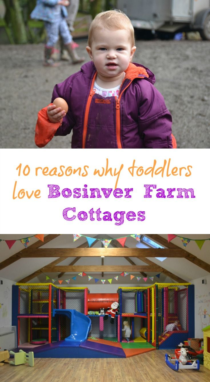 Our toddlers loved our stay at Bosinver Farm Cottages in Cornwall. For them, it ticked all the boxes for a great family holiday with plenty for kids to do