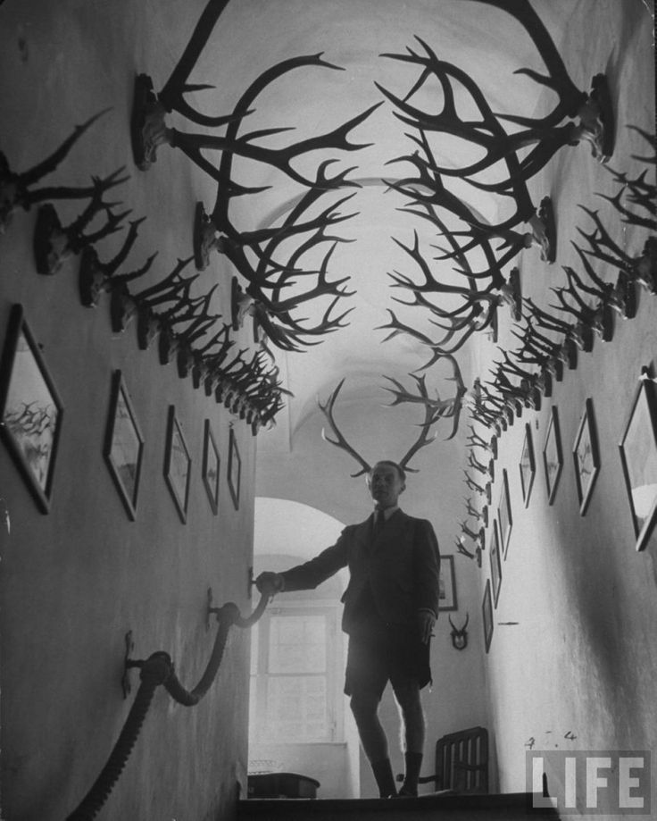 """Images: Prince Franz Joseph of Thurn and Taxis  """"…standing amidst his collection of 2,000 deer antlers & antelope horns in the hallway of castle""""."""