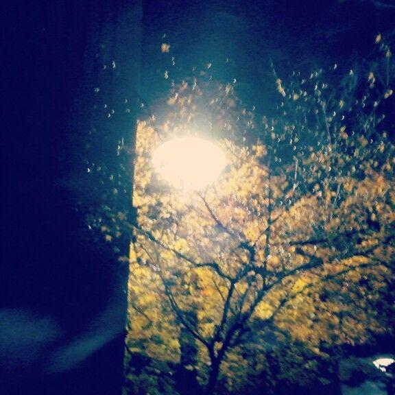 smoke & streetlight