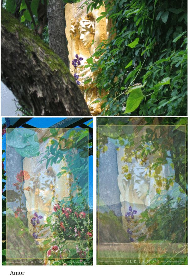 Garden banner designs for Saint-Gaudens National Historic Site by Holly Alderman for a special exhibition; Photoshop layers of transparent images