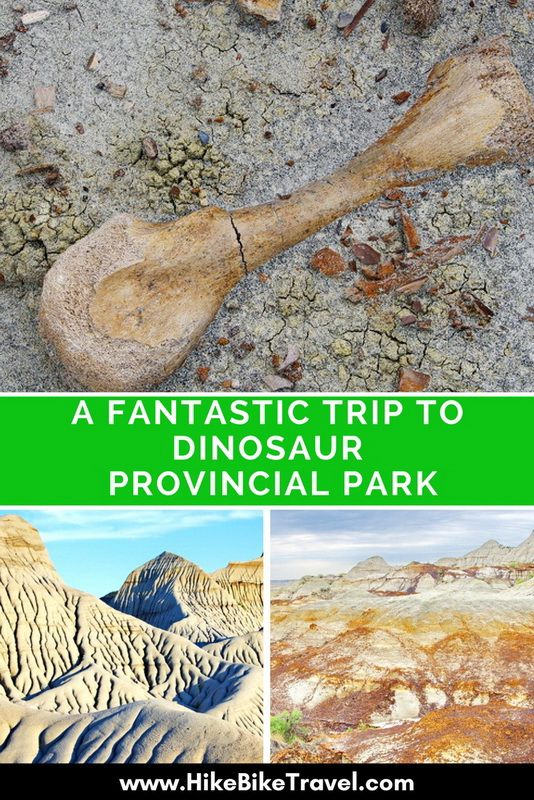 How to get the Most out of Your Time in Dinosaur Provincial Park