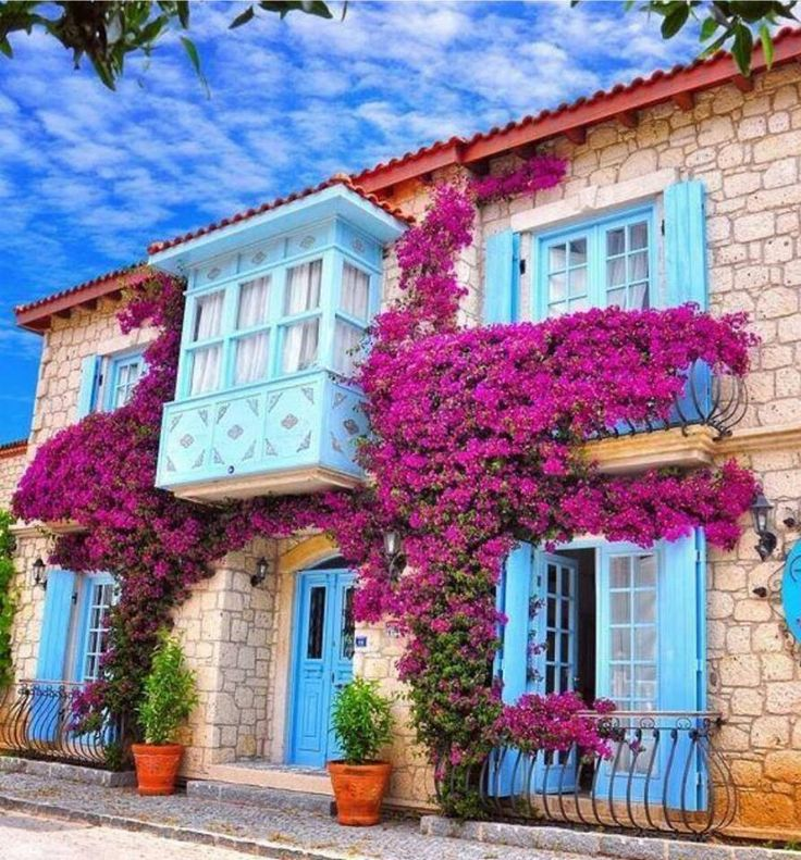 The Traditional Old Stone Houses and the Paradise of Sea Surfing, also Rich of Begonias of the Mediterranean are only the -Alaçatı (Alachati)- Province of Izmir, Turkey.