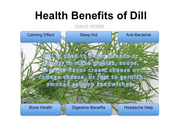 Dill…for bone health…a source in calcium;  anti-bacterial…fights infections & for wound healing; free radical protection…for heart health & overall wellness; digestive benefits-…soothes intestinal upsets; hiccup treatment…drink tea or dill pickle juice; headache help…tea or pickle juice; calming & as a sleep aid … has a calming effect when drinking the tea or chewing the seeds...
