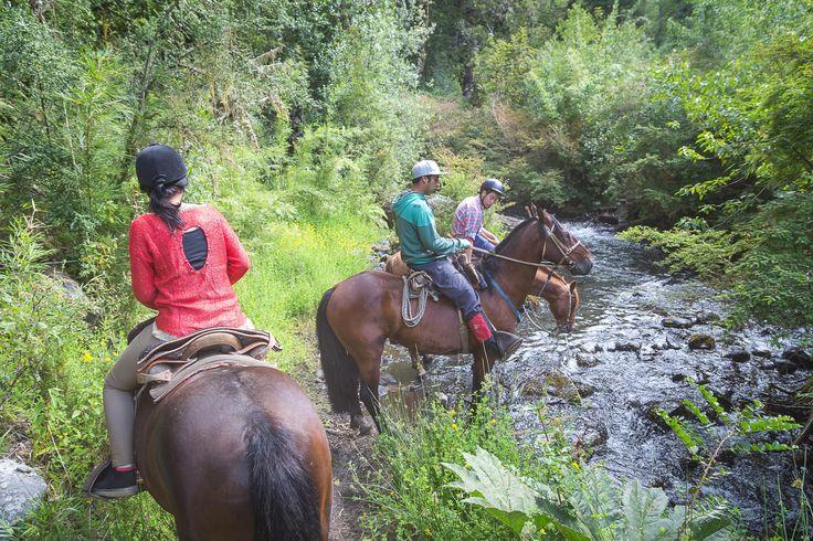Cavalgada é uma das atividades em Huilo Huilo