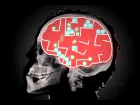Tips for increasing brain memory power image 2