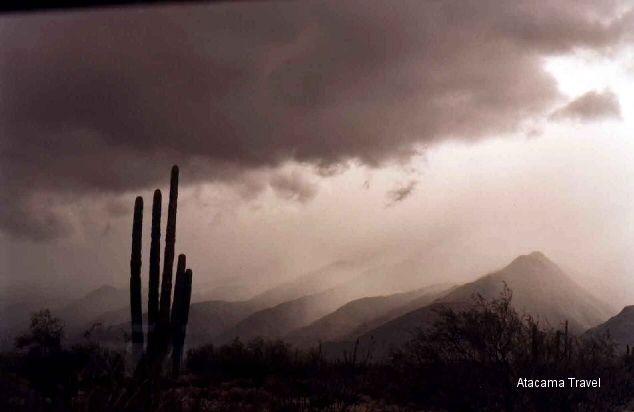 Baja California, Atacama Travel, atacama@atacama.it