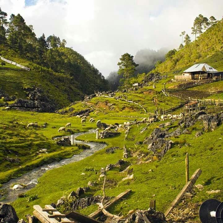 Cuchumatanes, Huehuetenango, Guatemala