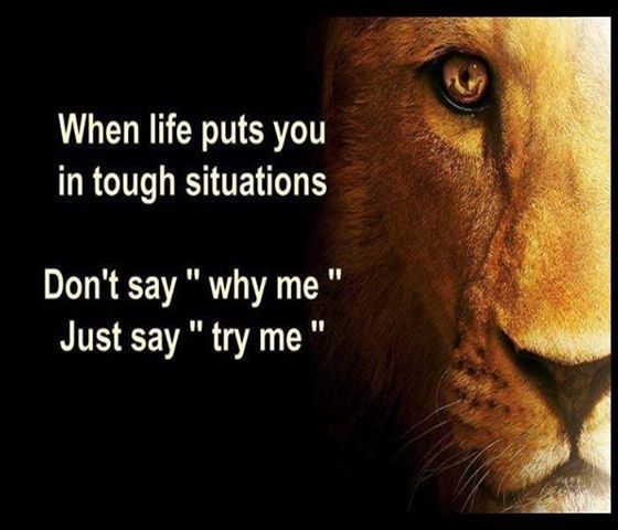 try me life quotes quotes positive quotes quote life quote positive quote inspiring