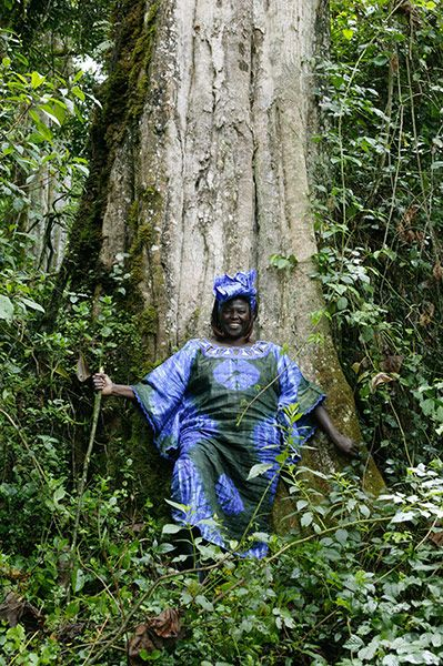Wangari Maathai in Kiriti, Kenya, 2004. After founding the Green Belt Movement, Africa's largest tree-planting project in 1977, she went on to become Kenya's assistant environment minister in 2003.
