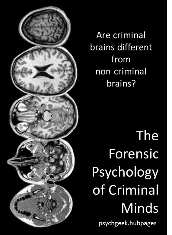 New scientific techniques are being used to explore the criminal brain and see if it really is different from the non-criminal brain.  Are there visible and measurable differences in the criminal mind, and if so what does that mean for criminal responsibility?  #crime #psychology http://psychgeek.hubpages.com/hub/brain-mapping-forensic-psychology-of-criminal-minds