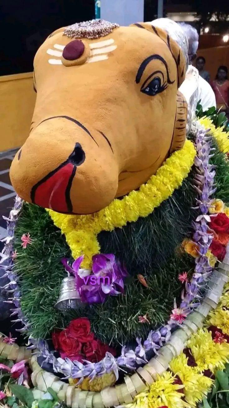 Pin by Nalayni 121 on நந்தி பகவான் in 2020 Christmas