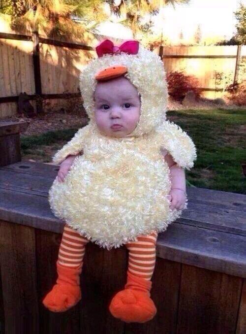 Baby Chick Kid