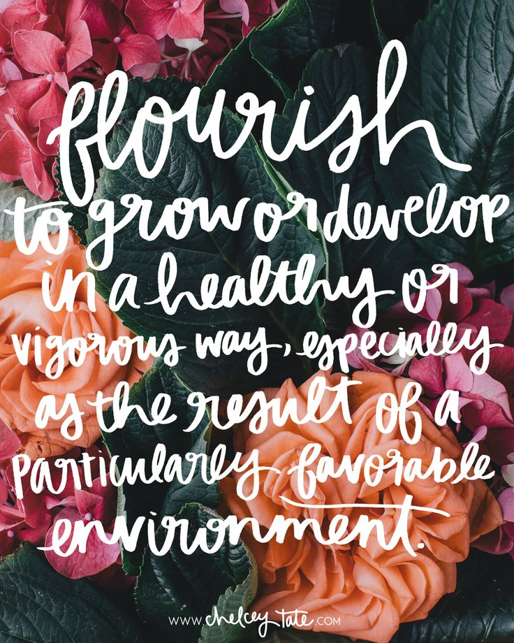 Flourish | Love these thoughts from Chelcey about choosing flourish as her word of the year.