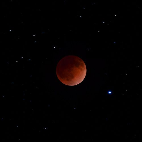 Blood Moon eclipse. Next time I'm going to rent a longer lens.  4/15/14