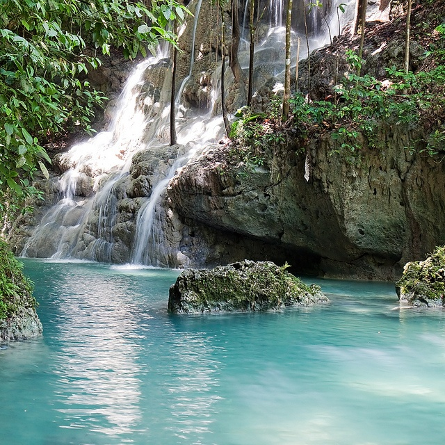 Best Place For Vacation Jamaica: 11 Best Somerset Falls Images On Pinterest