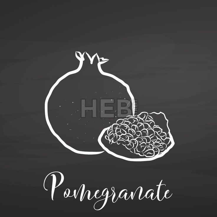 Pomegranate drawing on chalkboard. Hand drawn healthy food sketch. Black and White Vector Drawing on Blackboard. ... ... by #Hebstreit