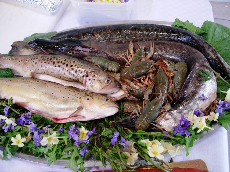 pesci d'acqua dolce al Food Market Festival di Torino