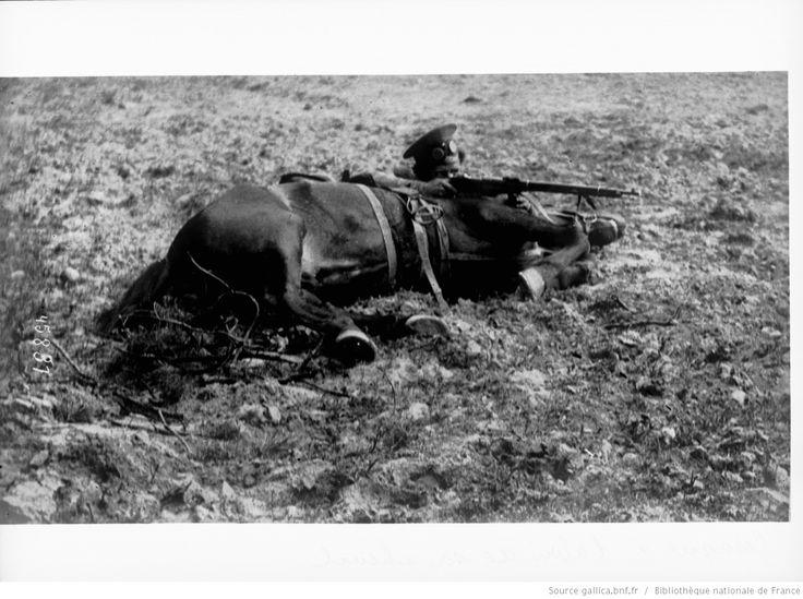 Cosaque [tirant au fusil] à l'abri de son cheval : [photographie de presse] / [Agence Rol] | Gallica