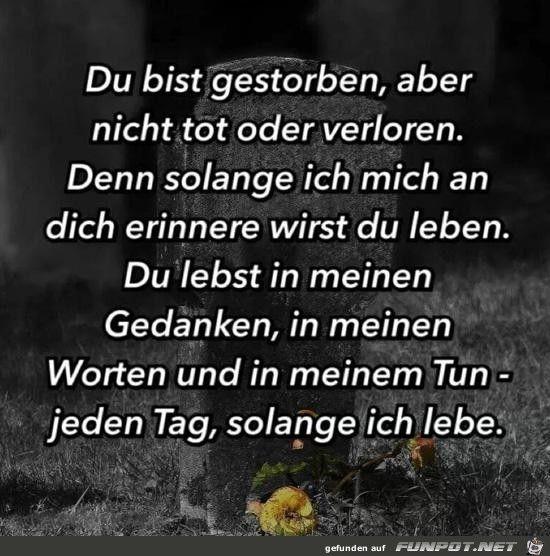 Datei U002710 Schöne Sprüche Und Lebensweisheiten Aus....u0027 Kommentar: