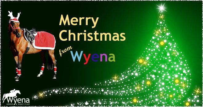 Our best wishes for a very Merry Christmas & a happy and safe New Year to members, friends & our extended Wyena family.  1st Rally - 12 Feb