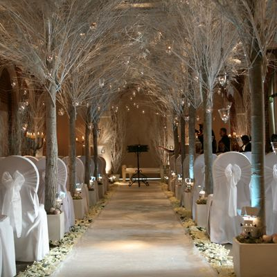 Winter aisle, not just for weddings... For example an entrance to a special event eg prom