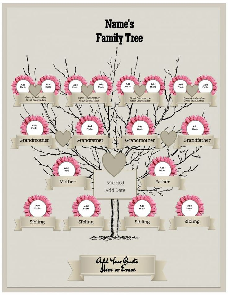 Las 25 mejores ideas sobre Family Tree Maker en Pinterest - tree diagram template