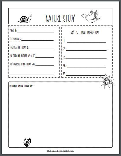 Nature Study The Charlotte Mason Way - The Homeschool Scientist