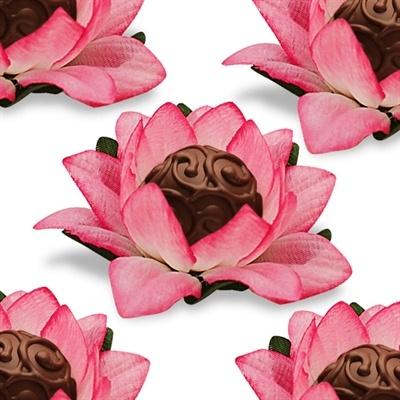 Lotus for chocolates
