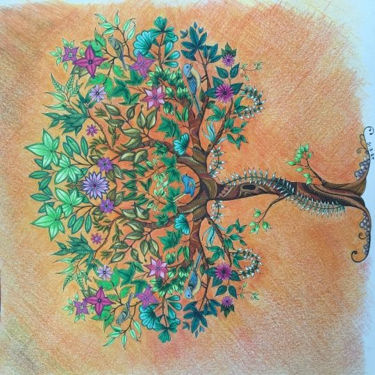 Johanna Basford | Picture by Zena | Colouring Gallery