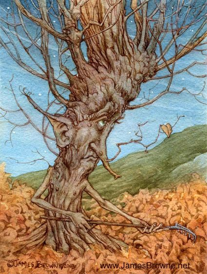 With his last leaf dangling from a twig, this old tree prepares himself for the winter days ahead.  The Last Leaf by James Browne