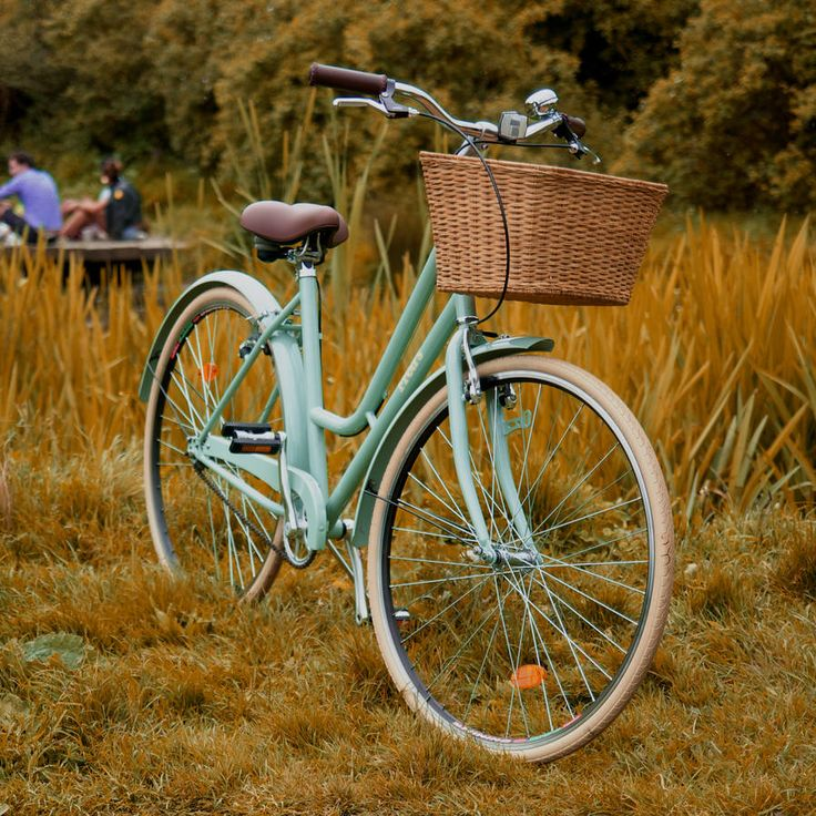 Old Fashioned Lady's Bicycle - ☆☆☆