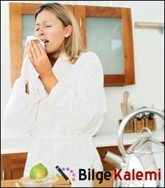 Mite Alerjisi Belirtileri - http://www.bilgekalemi.com/index.php/mite-alerjisi-belirtileri/ #Alerjiler