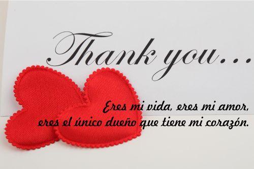 ... mi vida, eres mi amor, eres el único dueño que tiene mi corazón