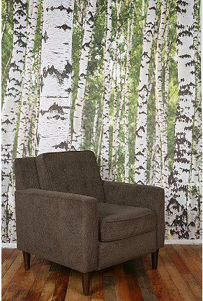 i have this birch tree wallpaper hanging in my apartment