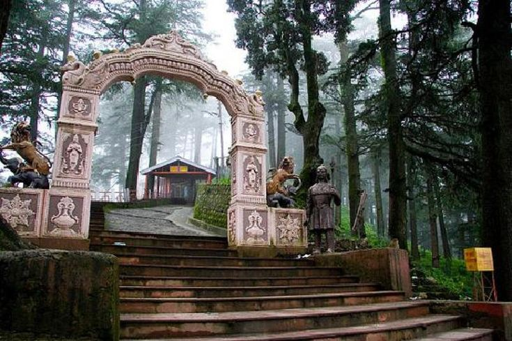 Shimla Tour Package- Kufri is one of the best places in Shimla where you can love to enjoy Skeeing. Best time to visit is in winter if you love to do Skeeing in India.