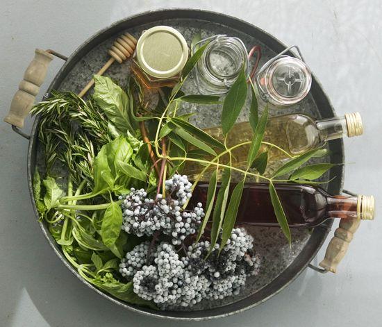 Elderberry recipes (can't wait till my elderberry bush starts producing!)