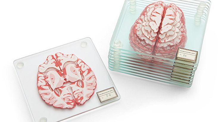 Put Your Coffee on The Perfect Gift for Neuroscience Nerds @jaypa74 I think you NEED this!!! ;)