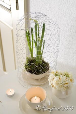 homemade chicken wire cloche and a little Spring vignette.