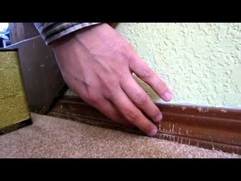 Touch Up Wood Furniture Quick Refinish Resurface Woodwork