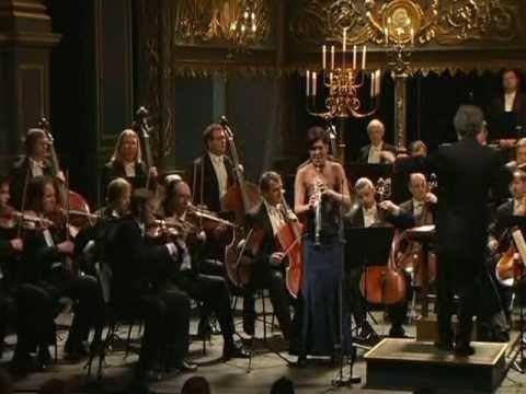 Mozart's Clarinet Concerto (1st Movement)