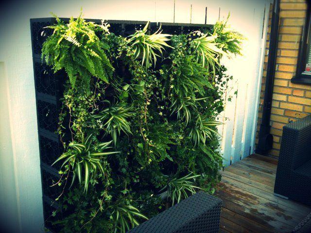 Gro Wall Vertical Garden System Design Packaging