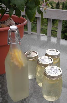 The Essential Herbal Blog: Elderflower Champagne