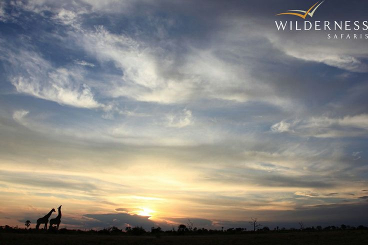 Wilderness Safaris Sunset in the Abu Concession which is in the heart of the Delta #Safari #Africa #Botswana