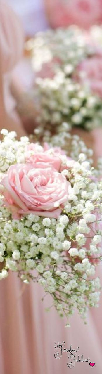Frivolous Fabulous - Sweet Pink Wedding Roses