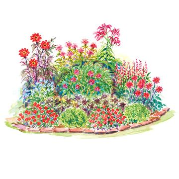All-Red Cottage Garden